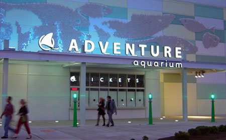 Adventure Aquarium Discounts Car Wash Voucher