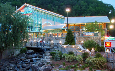 Ripley S Aquarium Myrtle Beach And Gatlinburg Usa